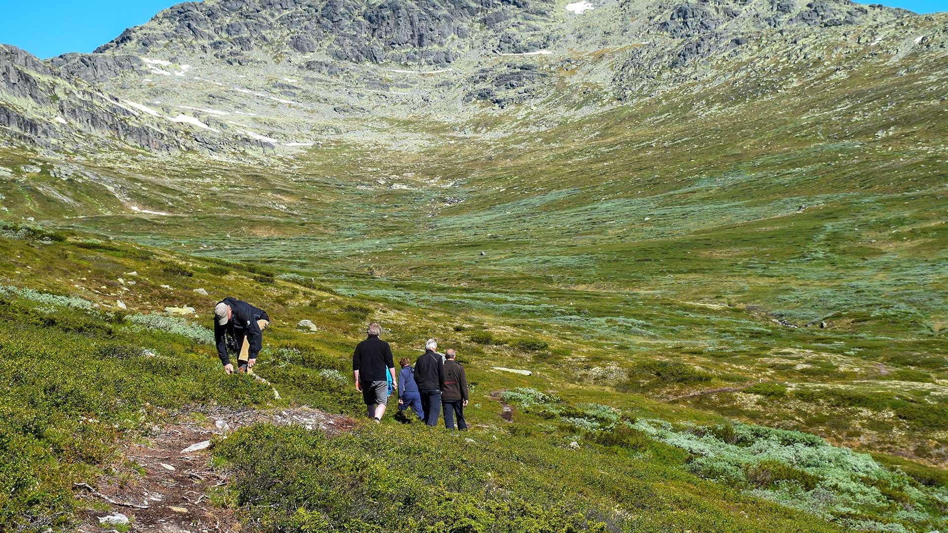 Hikers at Olavsbu.